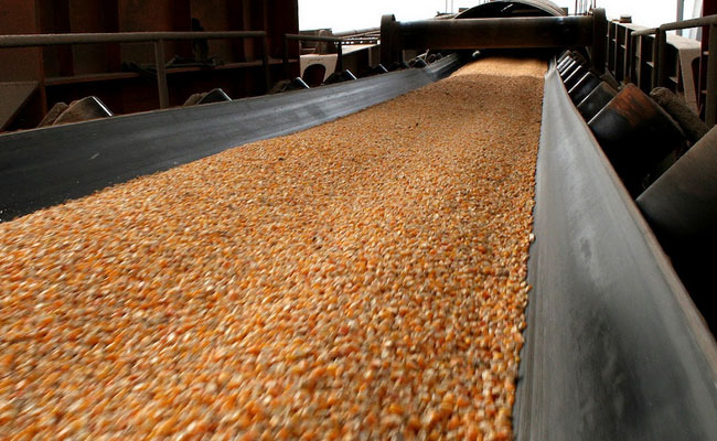 Brazil's heart cereals to all over our planet